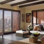 -venetian-blinds